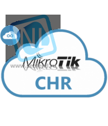 Лицензия MikroTik Cloud Hosted Router P10
